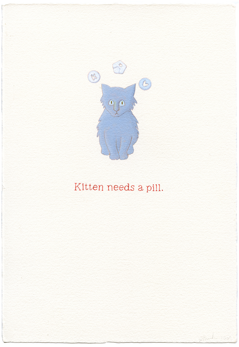 kitten needs a pill