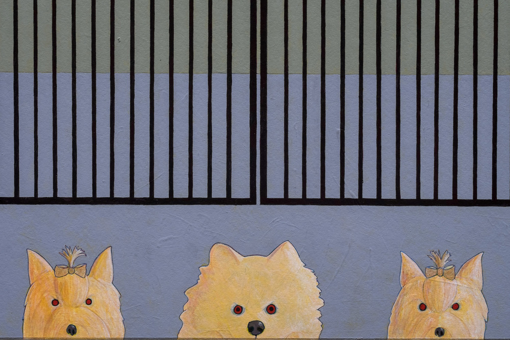 Dog Gate   Detail 3
