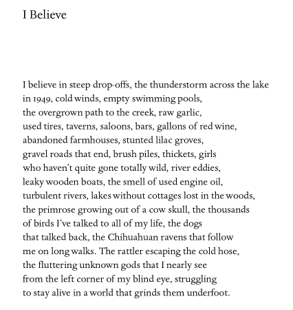 Jim Harrison, from In Search of Small Gods (2010)
