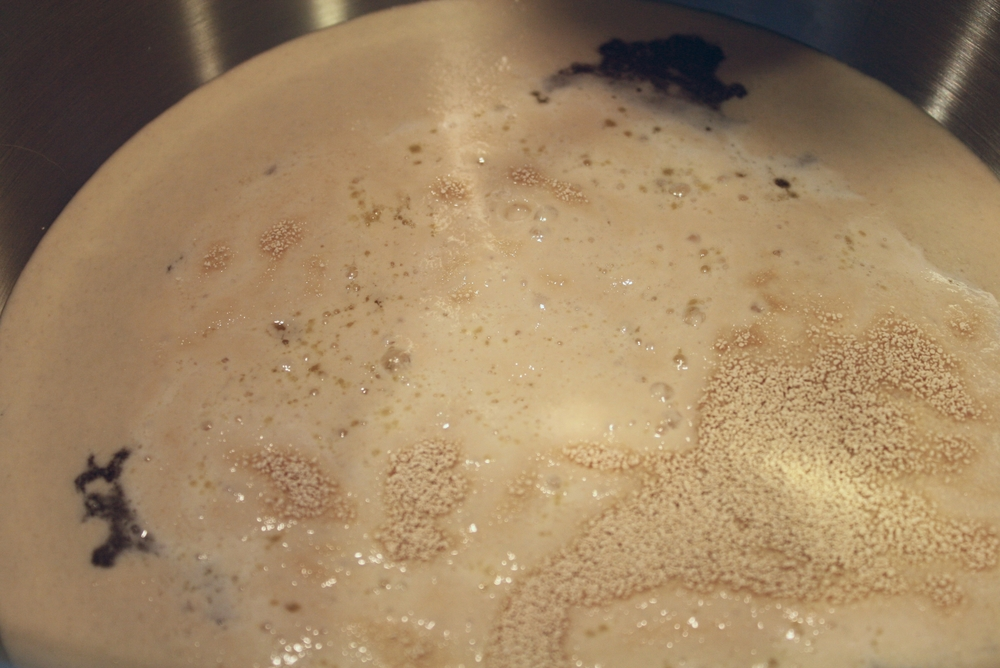 Yeast mixture getting foamy