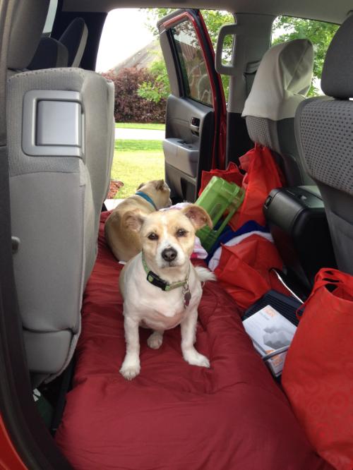 "Sissy says, ""Let's go, Mom!"""