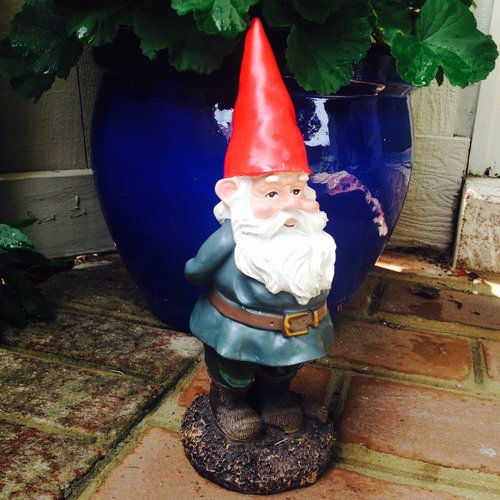 Arthur, my friendly garden gnome