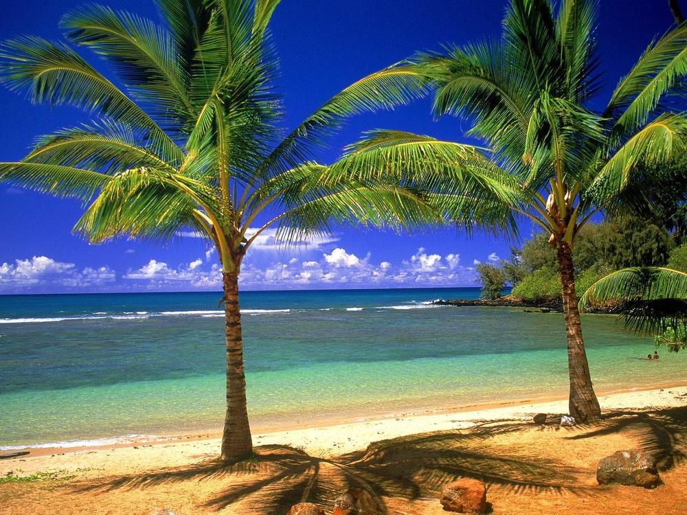 tropical_lagoon-1600x1200.jpg