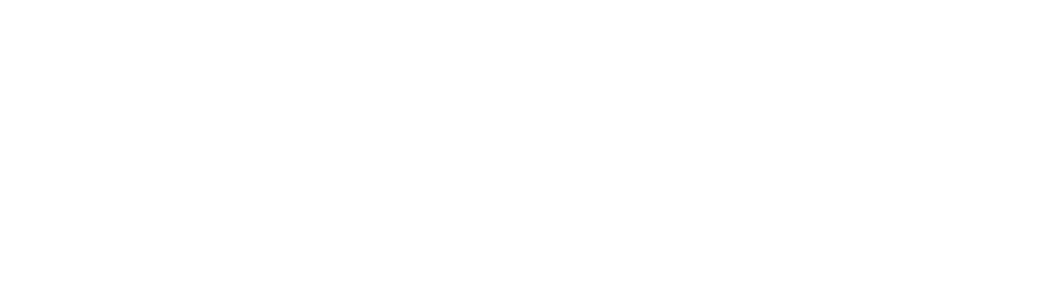 Wizard Technologies, LLC