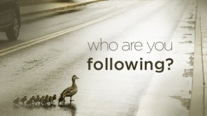 Who are you following_.jpg