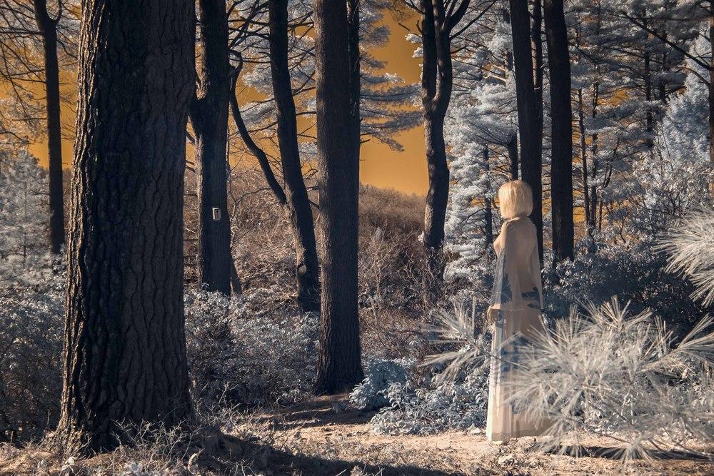 Awakenings II... (Calliope Series)