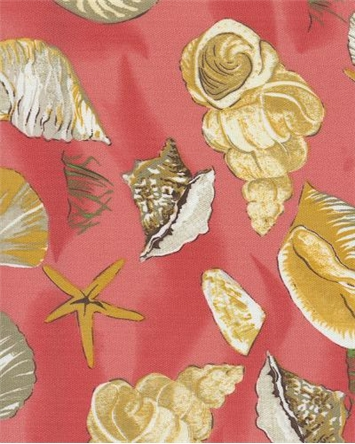 seashells-coral.jpg