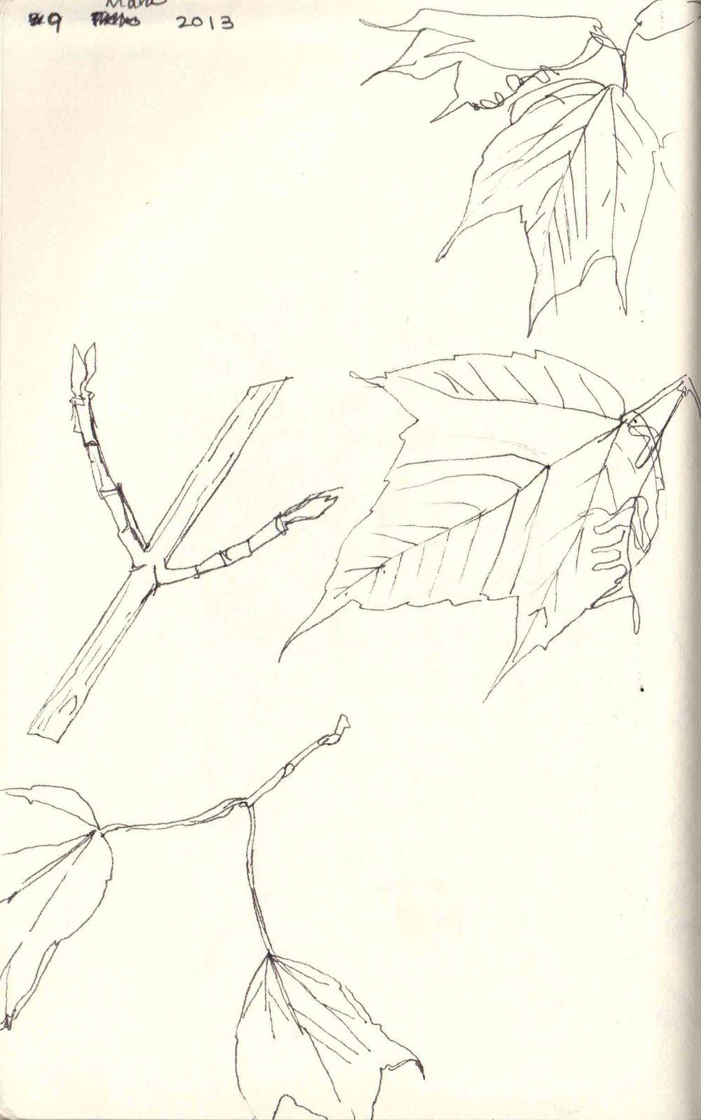 03_09.jpg