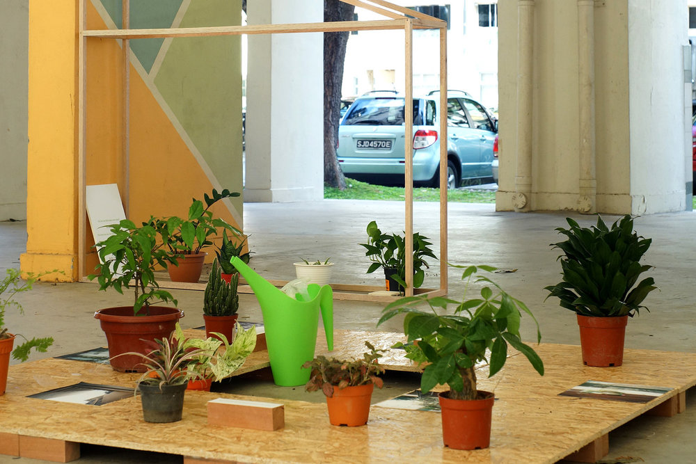 Joscelin Chew & Megan Miao,  (HOUSE)plants