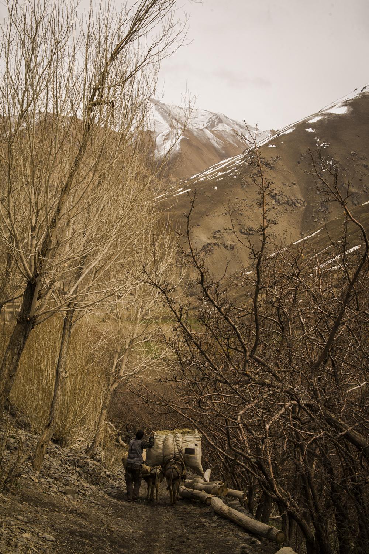 Jawzareen mountains