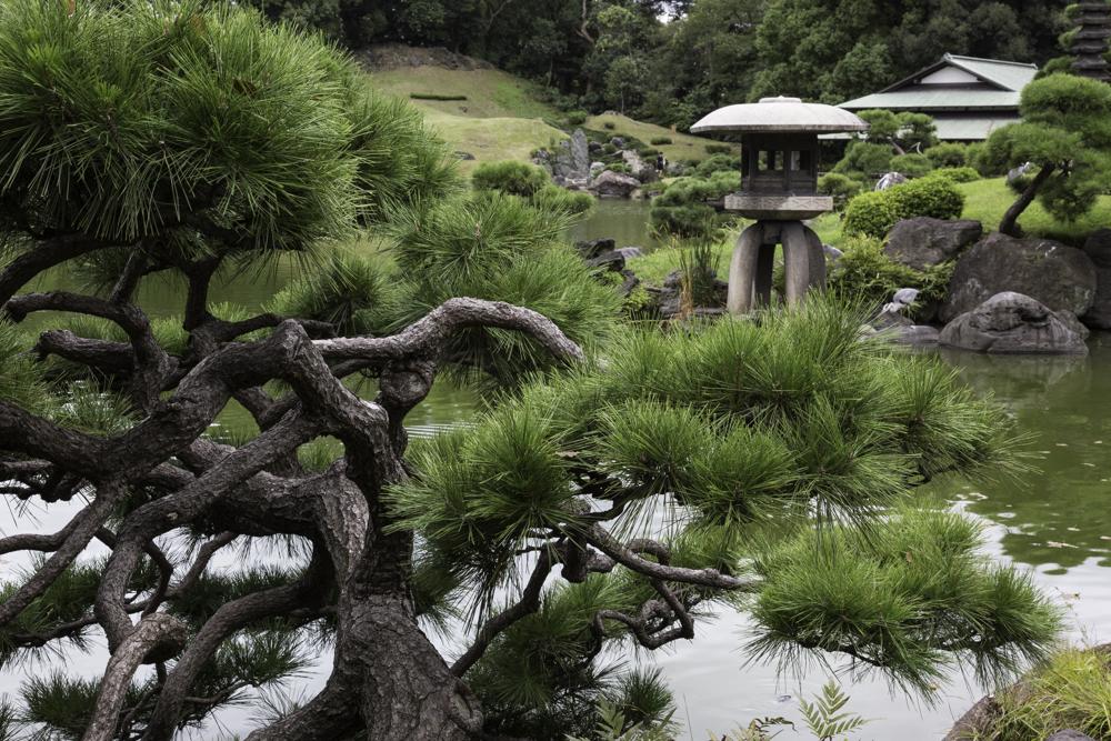 A garden in Kanazawa