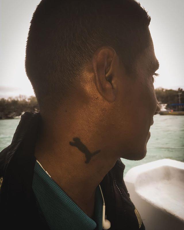 Saludos desde Santa Cruz #puma #tattoo