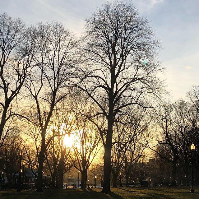 I ❤️ Boston #bostoncommon