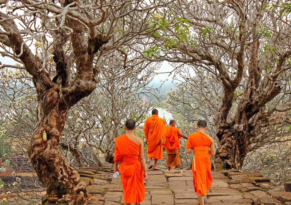 Monks in orange robes visiting Wat Phu temple