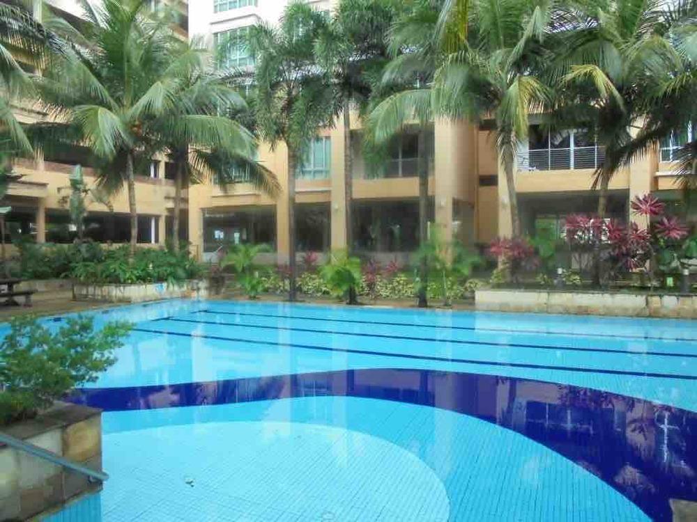 Damaipuri pool