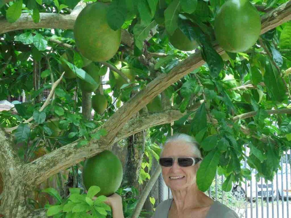 Erica and strange fruit