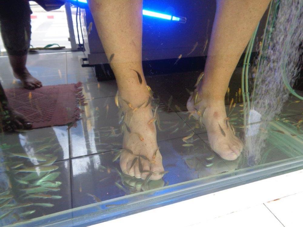 Fish Feet.jpg