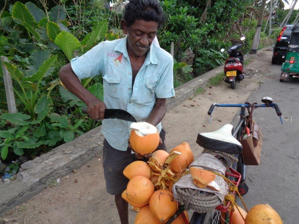 King coconut vendor