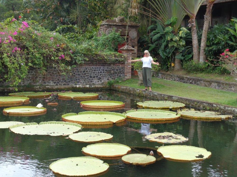 Water lilies at the Water Palace