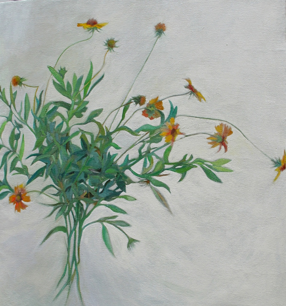 Nancy Dawes, Gaillardia, oil on canvas, 23 x 25""