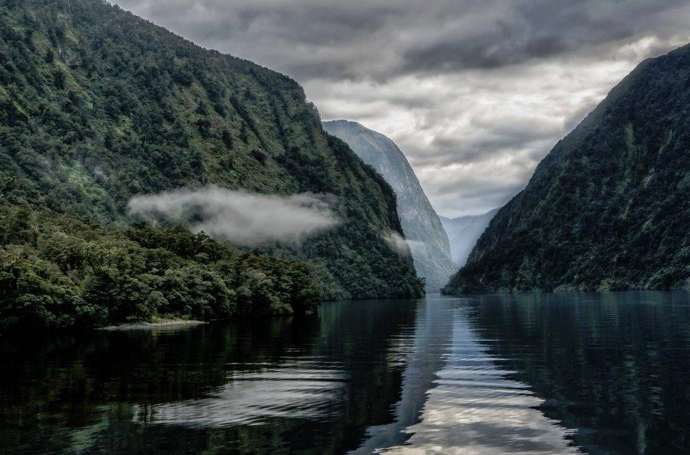 seemann NZ.jpg