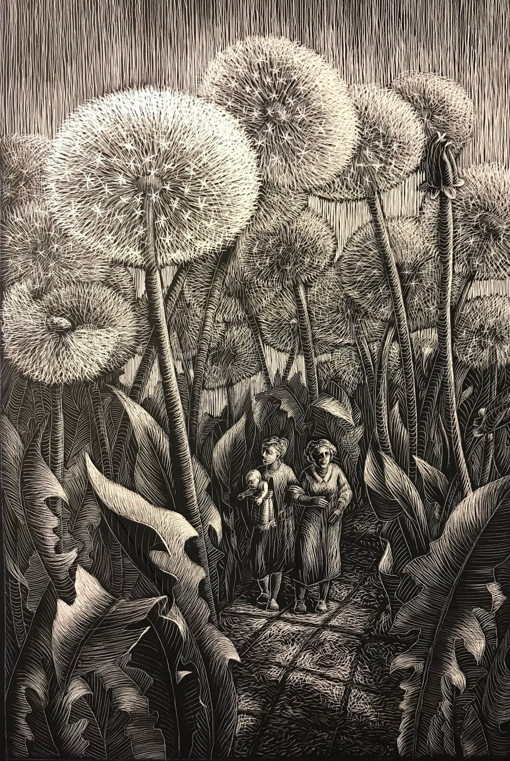 Dandelions (from Why Fish Don't Exist), scratchboard