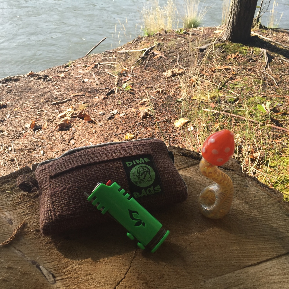 Here's my cute mushroom pipe I took it out into the forest! The pouch is from Dime Bags and is padded for safe storage and transportation