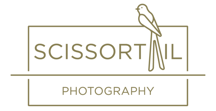 Scissortail Photography