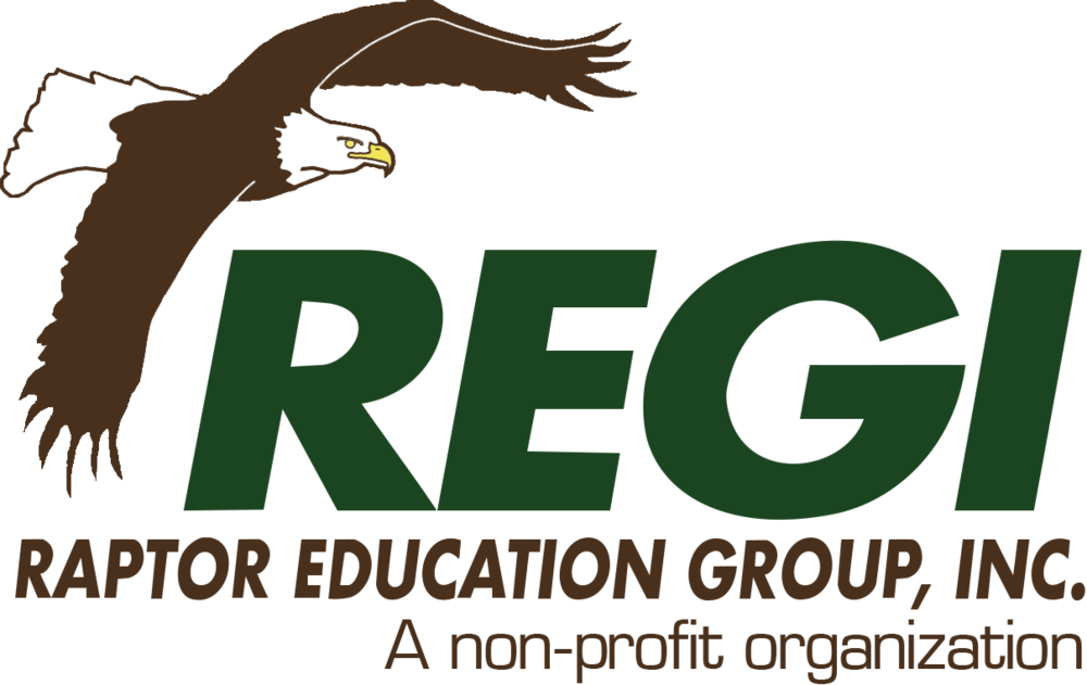 REGI_logo_large_transparent.png