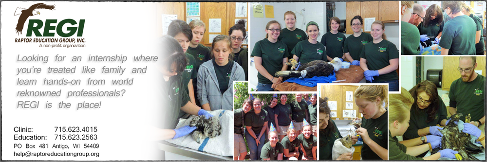 Raptor Education Group Interns learn from world reknowned biologists.png