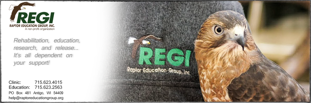 Raptor Education Group Needs Your Support.jpg