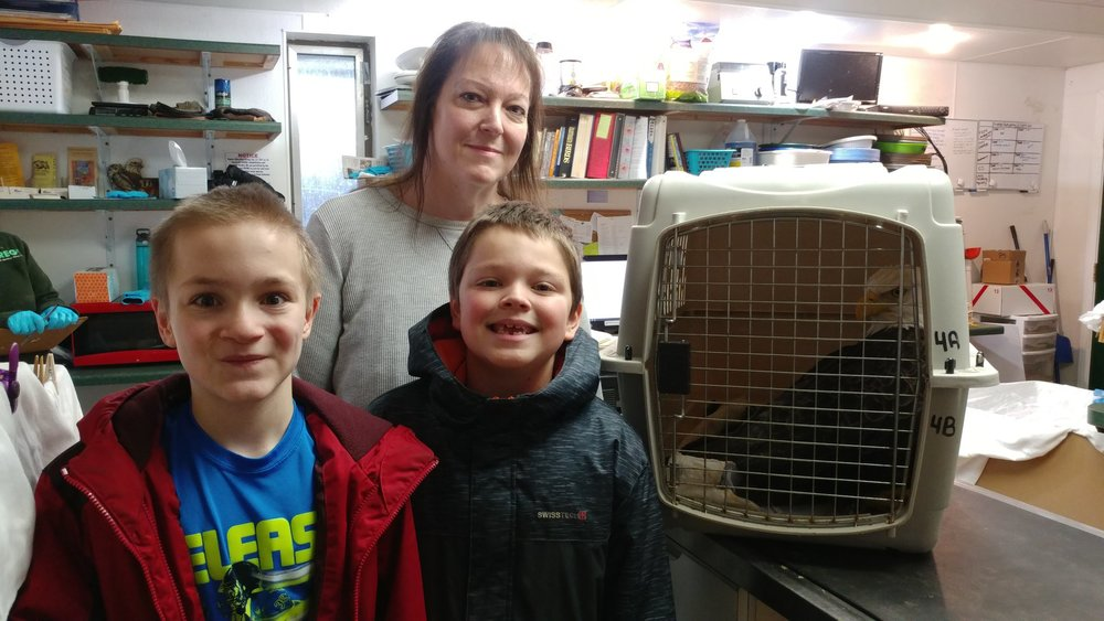 Our thanks to Kim Arrowwood and her sons for transporting the eagle from Eau Claire to REGI.