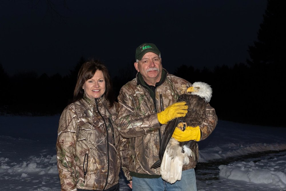 Kevin Grenzer and Linda Kevin Grenzer rescued the lead poisoning bald eagle from Gleason.