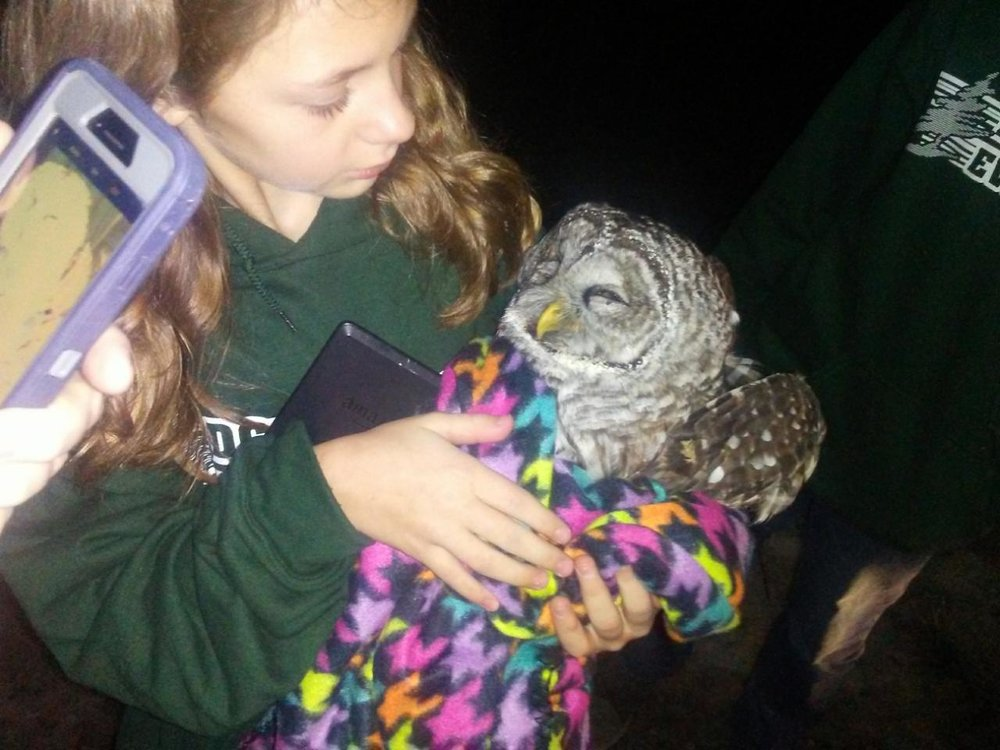 This photo was taken by Phil Henle when Emma rescued the owl from the road. Love the care and competency of this young lady.