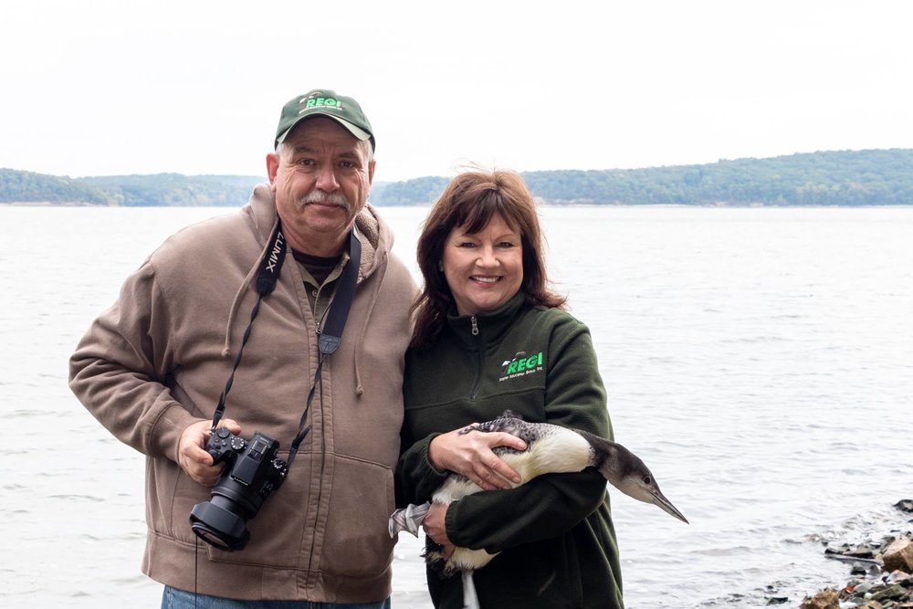 Kevin Grenzer and Linda Kevin Grenzer prepare to release a loon into great migratory habitat.