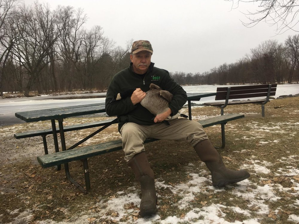 Kevin Grenzer with his miracle capture! Fern the Goose.