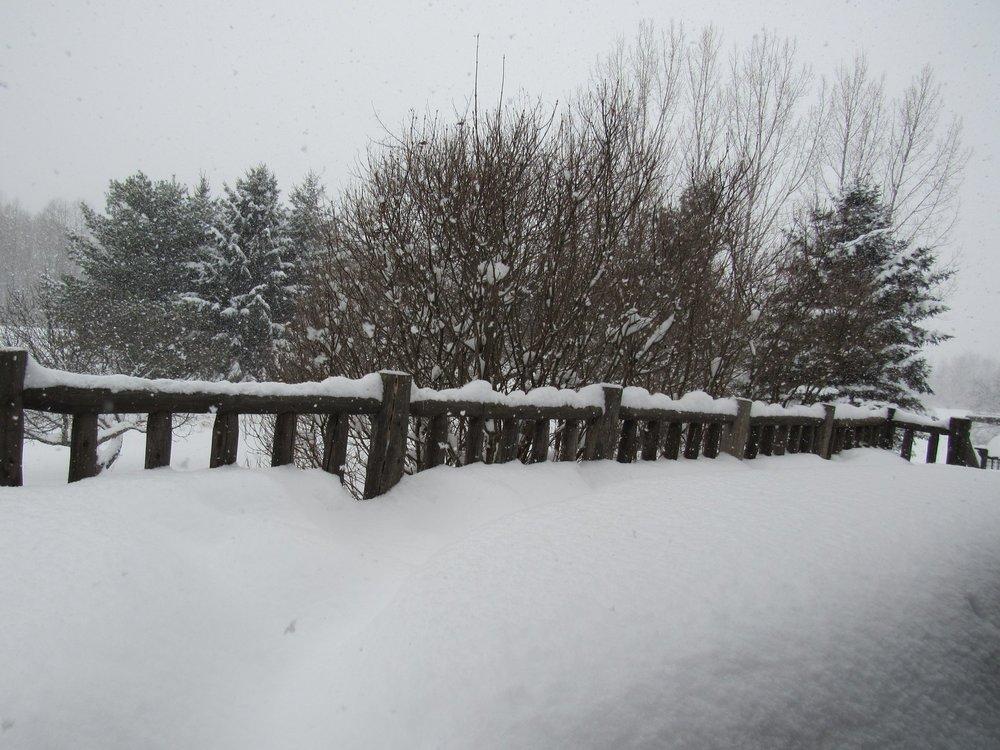 Lots of snow that was shoveled by Amanda Adamski! Thanks!