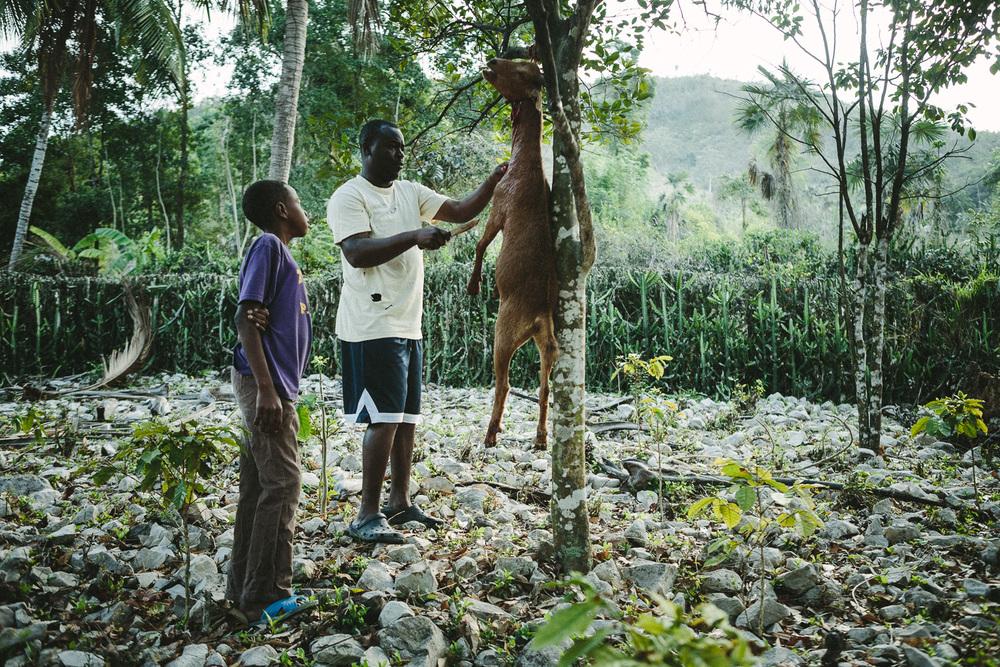 haiti_samples_001.jpg