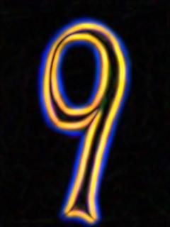9 neon.jpg