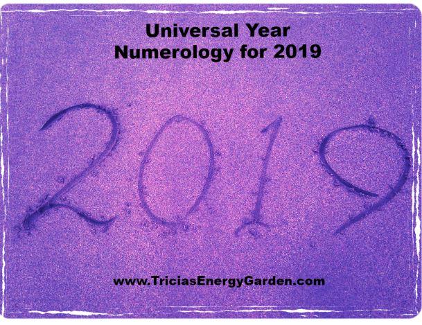 Universal Year 2019.JPG