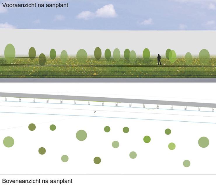 Beeld direct na aanplant Bomen: + 6 m hoog Heesters: + 1,75 m hoog
