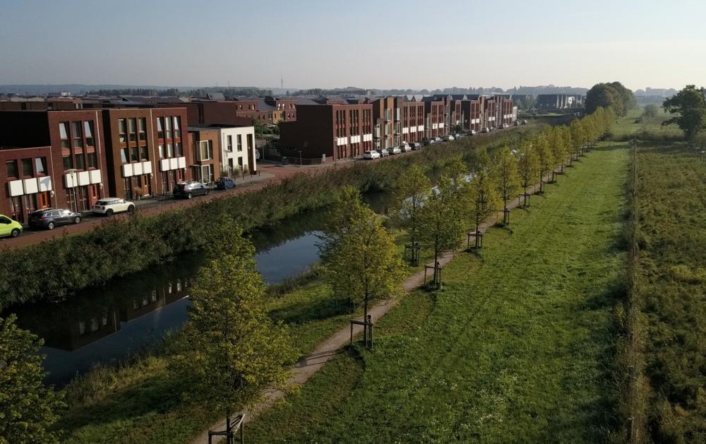 Arnhem-Zuid:Schuytgraaf 1e fase  lindenlaan