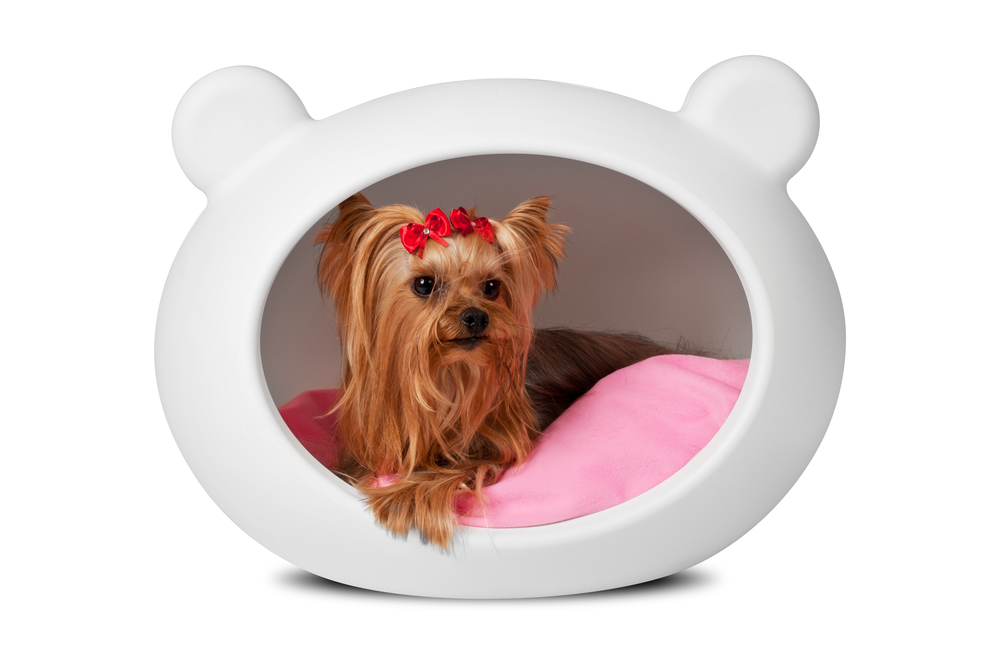 dog_bed_cave_house_white_front.jpg