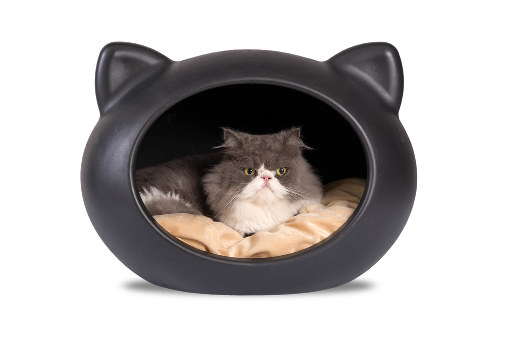 CCP-APT - Black Cat Cave with Beige Cushion.jpg
