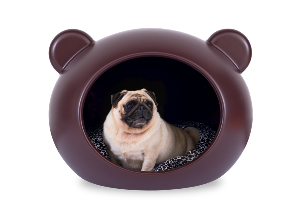 Luxury Pet Beds Designs Online Uk Guisapet