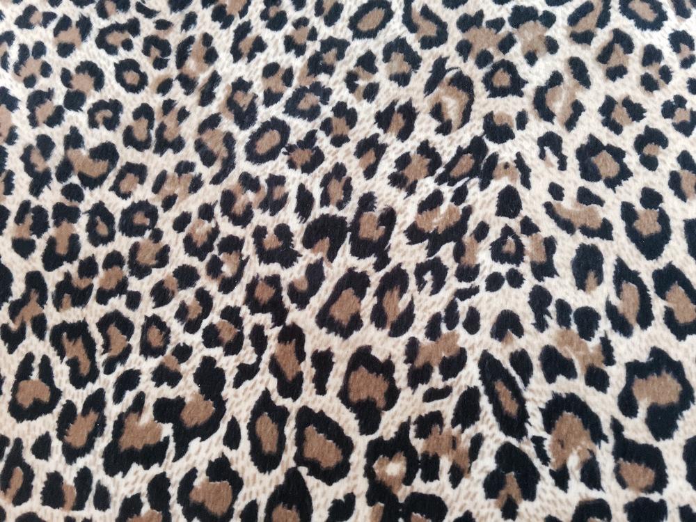 Animalprintcover.jpg