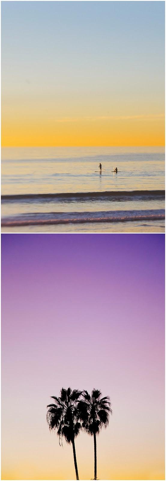 California2013_2420.jpg