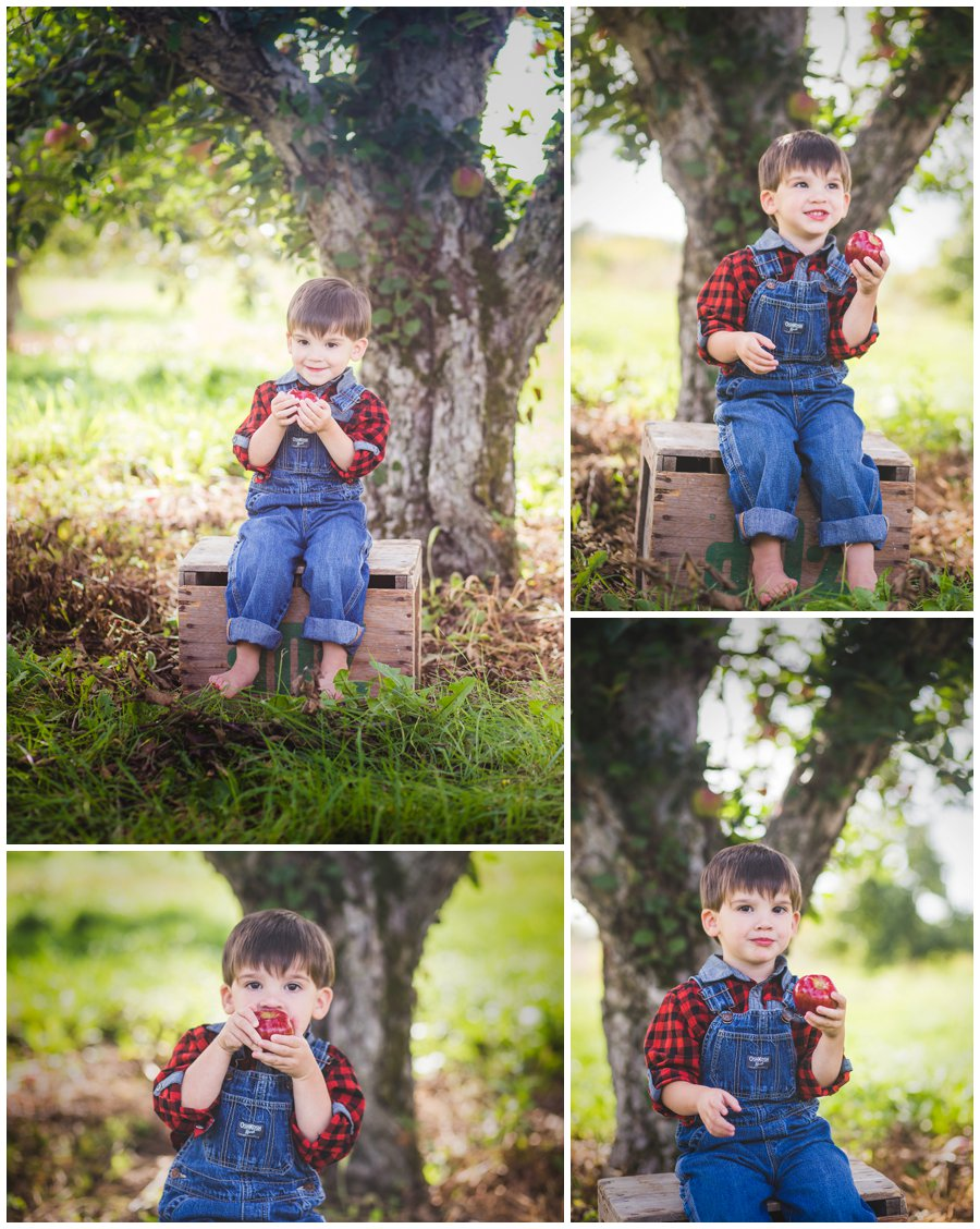 Scotsdale Farm Family Photography - Love Bee Photography_0119.jpg