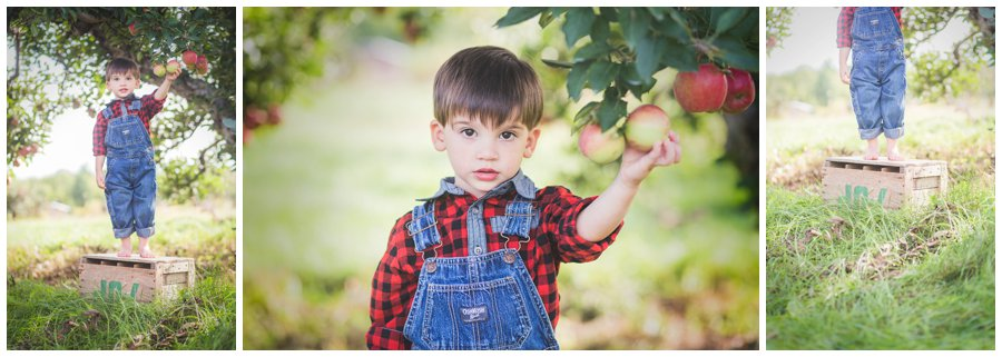 Scotsdale Farm Family Photography - Love Bee Photography_0120.jpg