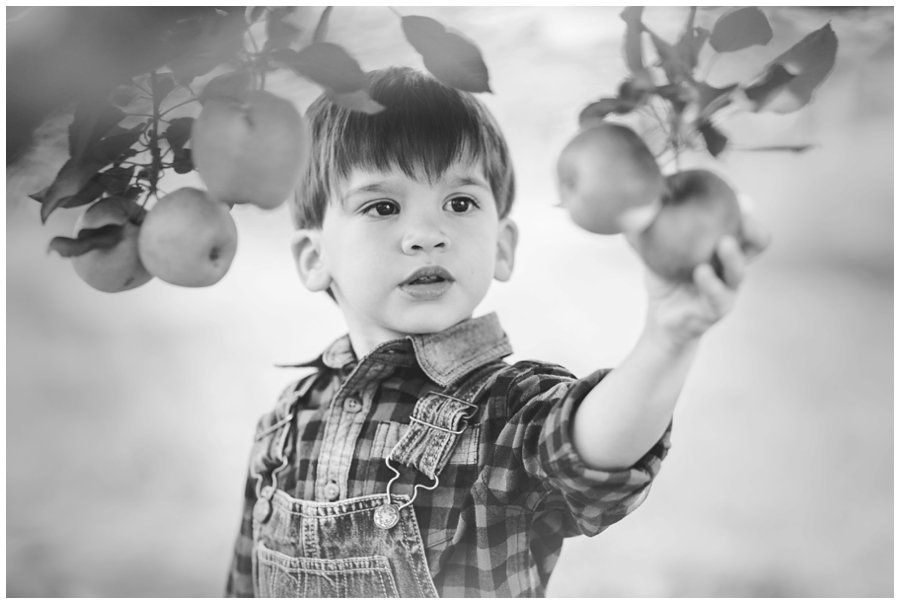 Scotsdale Farm Family Photography - Love Bee Photography_0122.jpg